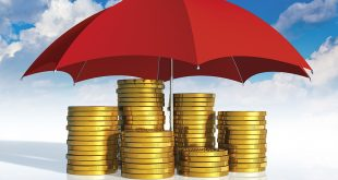 أحكام وضوابط التصرف في المال العام بين الشريعة والقانون