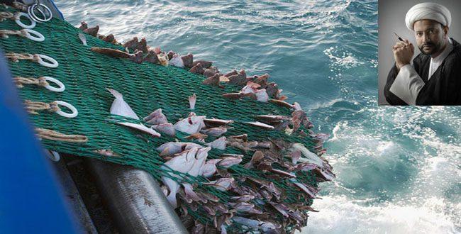 اختلاف النصوص في موت السمك في الشبكة / الشيخ محمد العُبيدان القطيفي