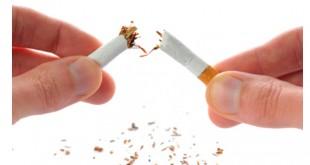حرمة استعمال و انتاج التدخين والتبغ والمتاجرة بهما