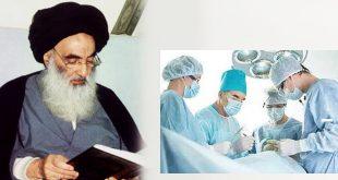 الحكم الشرعي لعمليات التجميل.. المرجع الديني آية الله العظمى السيستاني