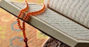 العقل ومصداقية الاحكام الاسلامية