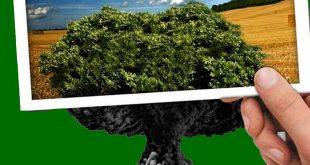 دور القانون الدولي الإنساني في حماية البيئة: دراسة مقارنة .. د. زكريا عبد الوهاب محمد زين