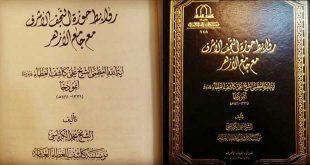 روابط حوزة النجف الأشرف مع جامع الأزهر