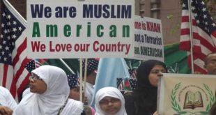 عدد-المسلمين