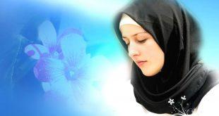 حقوق المرأة فقهيا بقلم: السيد محمد صادق الخرسان