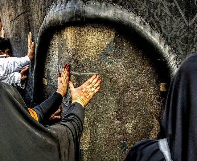 تقرير مصور من ركن اليماني