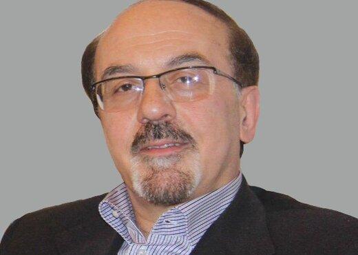 الدكتور هادي أنصاري
